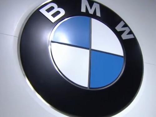 bmw313